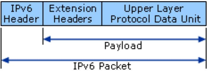 figure 2-ipv6 packet