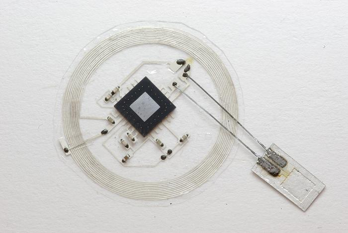 The sensor, smaller than the tip of a pencil, connects to an embeddable wireless transmitter that lies on top of the skull. (Source: John A. Rogers/University of Illinois)