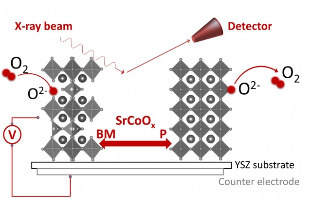 This diagram shows how an electrical voltage can be used to modify the oxygen concentration, and therefore the phase and structure, of strontium cobaltites. Pumping oxygen in and out transforms the material from the brownmillerite form (left) to the perovskite form (right). (Source: Bilge Yildiz and Qiyang Lu/MIT)
