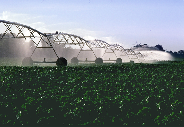 PivotIrrigationOnCotton