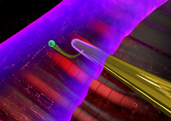 When laser light interacts with a nanoneedle (yellow), electromagnetic near-fields are formed at its surface. A second laser pulse (purple) emits an electron (green) from the needle, permitting to characterize the near-fields. (Image: Christian Hackenberger)