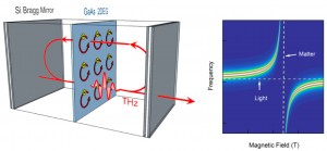 A method created at Rice University closes the gap between light and matter and may help advance technologies like quantum computers and communications. The lab designed and built a high-quality cavity to contain an ultrathin layer of gallium arsenide. By tuning the material with a magnetic field to resonate with a certain state of light in the cavity, they prompted the formation of polaritons that act in a collective manner. (Source: Rice University)