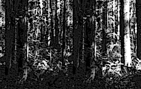 fig 2 bigfoot vanished