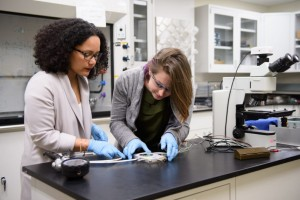 Professor Debbie Senesky, left, works with graduate student Caitlin Chapin on electronics that can resist extreme environments. (Source: Stanford University)